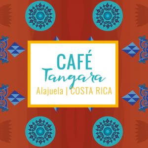 Café Tangara - Alueja Costa Rica - Yellow peak cafés de spécialité